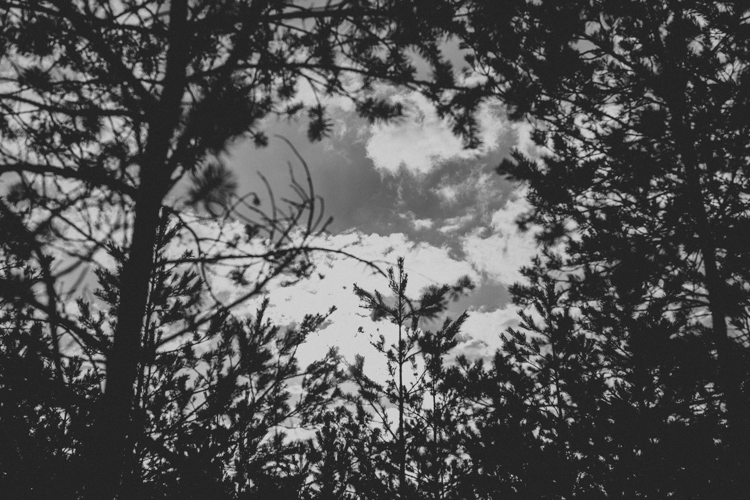 A i M - blog-32